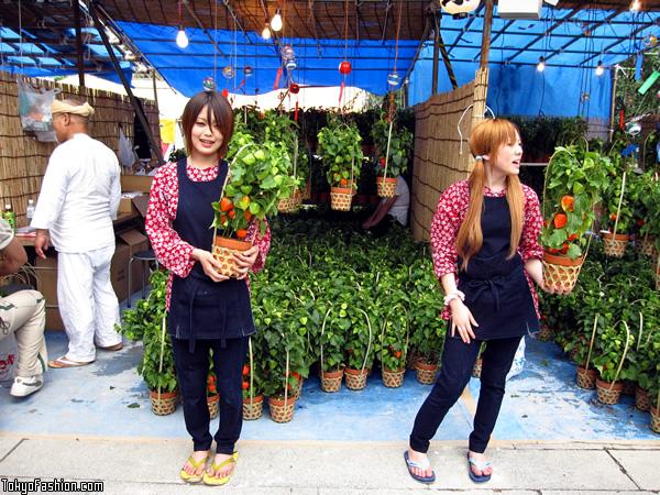 Japanese Girls in Asakusa