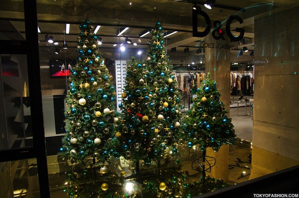 D&G Christmas Trees