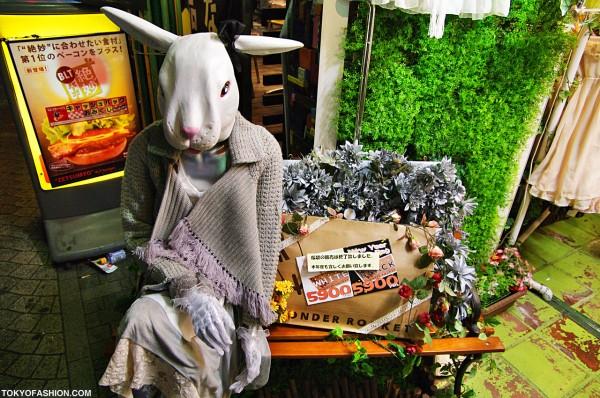 Wonder Rocket Scary Rabbit Sale