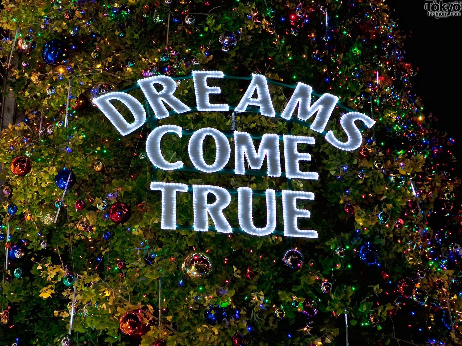 dreams come true Dreams come true, inc was an all volunteer organization until 2008 the board of directors comprised of four officers and twelve directors-at-large are responsible for the entire operation of the organization.