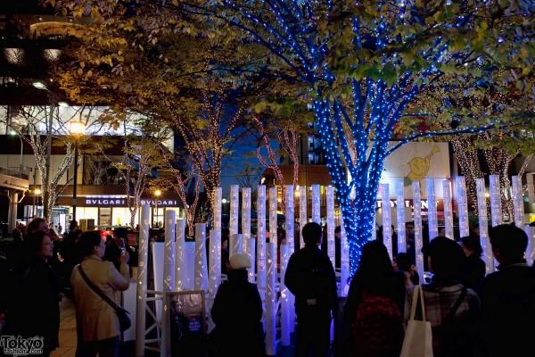 Omotesando Christmas Lights