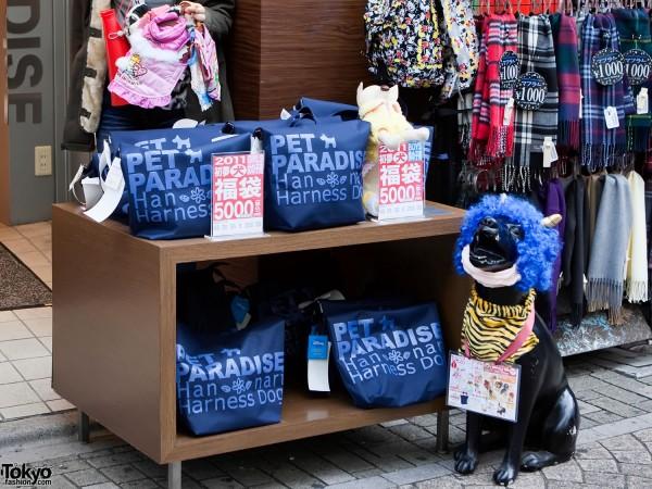 Pet Paradise Takeshita Dori
