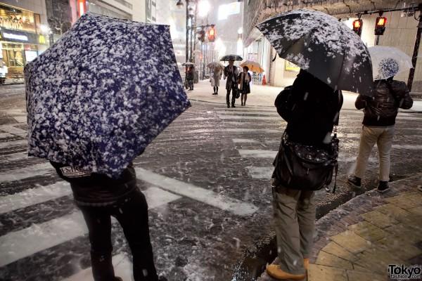 Shibuya Snow