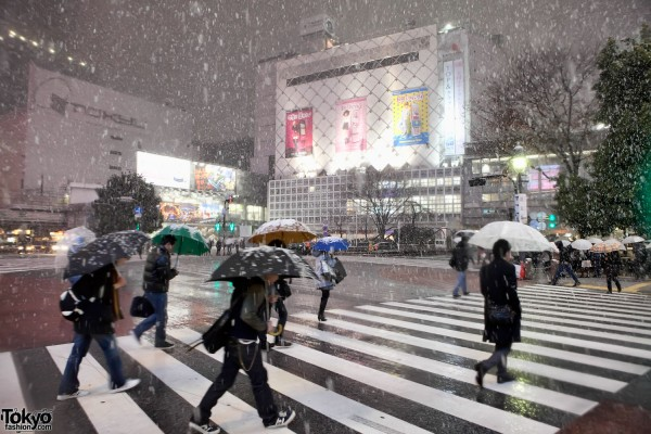 Shibuya Crossing Snow