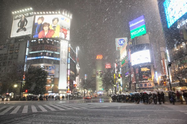 Snowy Day in Shibuya