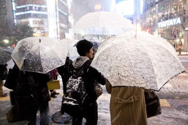 Tokyo Umbrellas in the Snow