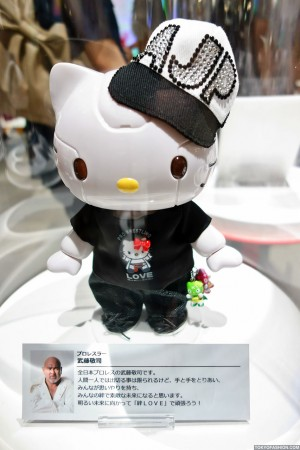Kittyrobot x Hello Kitty (106)