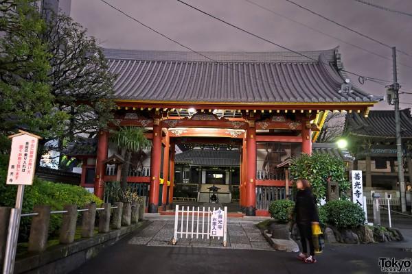 Tokyo Christmas Aoyama & Omotesando (69)