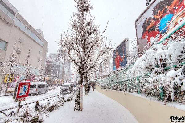 Snow in Harajuku & Shibuya on Coming of Age Day 2013 – Pictures & Video