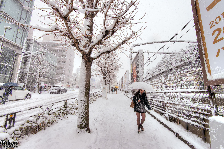 Snow in Harajuku & Shibuya on Coming of Age Day 2013