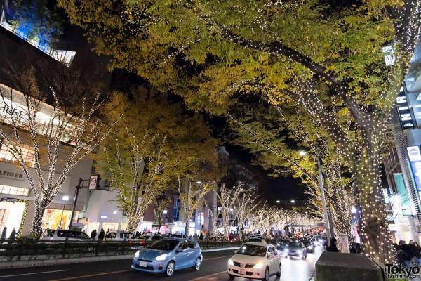 Harajuku Christmas - Meiji Dori (55)