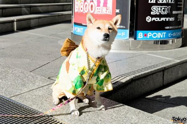 Shibuya Fukubukuro - Lucky Bags (99)