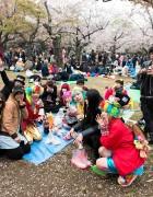 """Kawaii Hanami"" with the Harajuku Fashion Walk Kids – Video & Pictures"