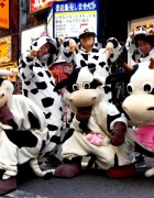 Cows on Center Street in Shibuya
